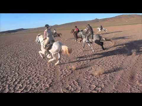Morocco Riding Holiday March 2015