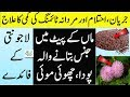 Lajwanti | Lajwanti Seeds Ke Fayde | Lajwanti Plant Seeds Benefits In Urdu