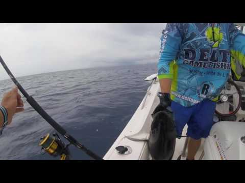 Surface Fishing For Tuna In Spain