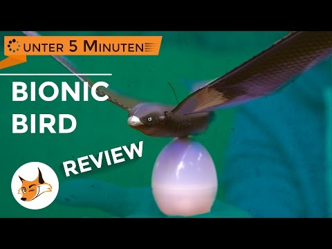 Bionic Bird - Die Vogel Drohne - Review in unter 5 Minuten