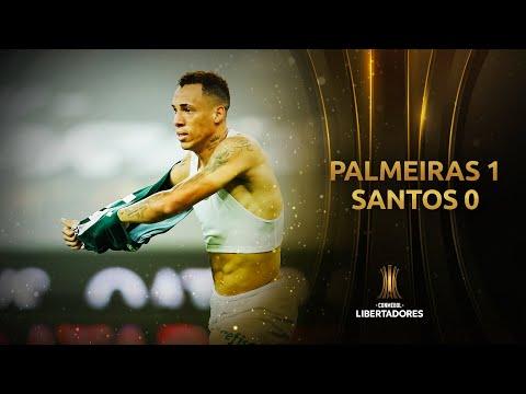 Palmeiras Santos Goals And Highlights
