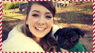 Pug Party! | Vlogmas