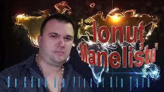 Ionut Manelistu - De Cand Am Plecat Din Tara, Hit