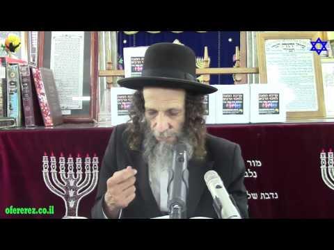 דוד המלך-הרב עופר ארז