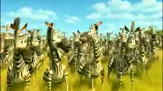 the meerkat s new groove part 14 a zebra alone friends finally