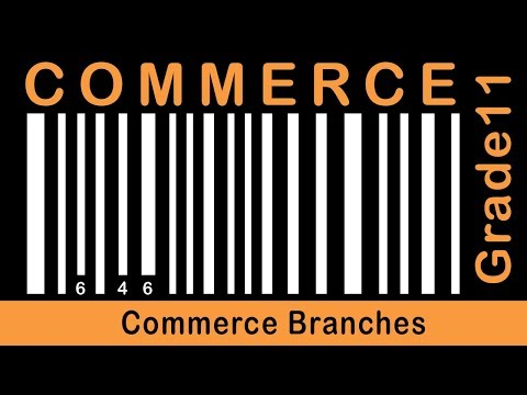 Commerce Grade 11 | Commerce Branches | Part 5