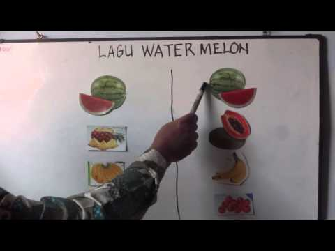 LAGU ANAK ANAK WATER MELON