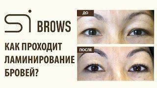 Как проходит ламинирование бровей Si Brows?