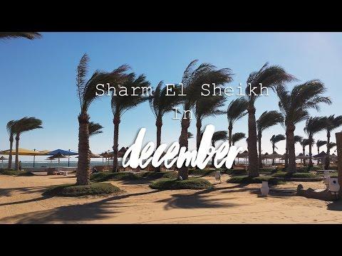 Egypt. Sharm El Sheikh. December
