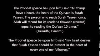 Sheikh Hajjaj Ramadan Al Hindawi Surah Yaseen MURATTAL الشيخ حجاج رمضان الهنداوي