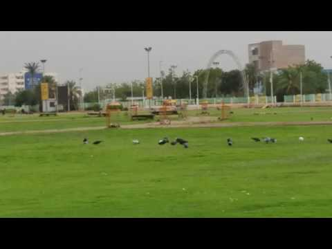 Green park in khartoum sudan