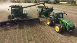Arters Farm Bean Harvest 2016