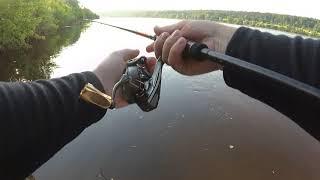 #Рыбалка и отдых с компанией#Ока#Спиннинг#Отводной поводок#Окунь#Рыбалка на Оке