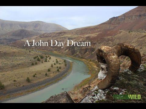 A John Day Dream