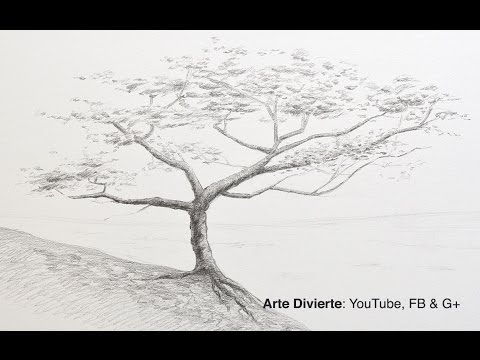 Cómo dibujar un árbol a lápiz from YouTube · Duration:  4 minutes 10 seconds