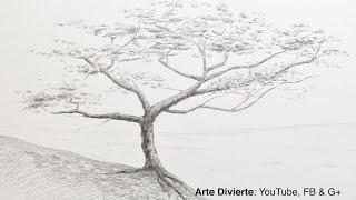 Cómo dibujar un árbol a lápiz