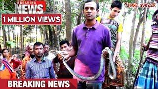 পটুয়াখালী রাজ্জাক বিশ্বাস সাপ ধরার লাইভ ভিডিও -৩০   Snake   Snakes   Snake catching Razzak Biswas