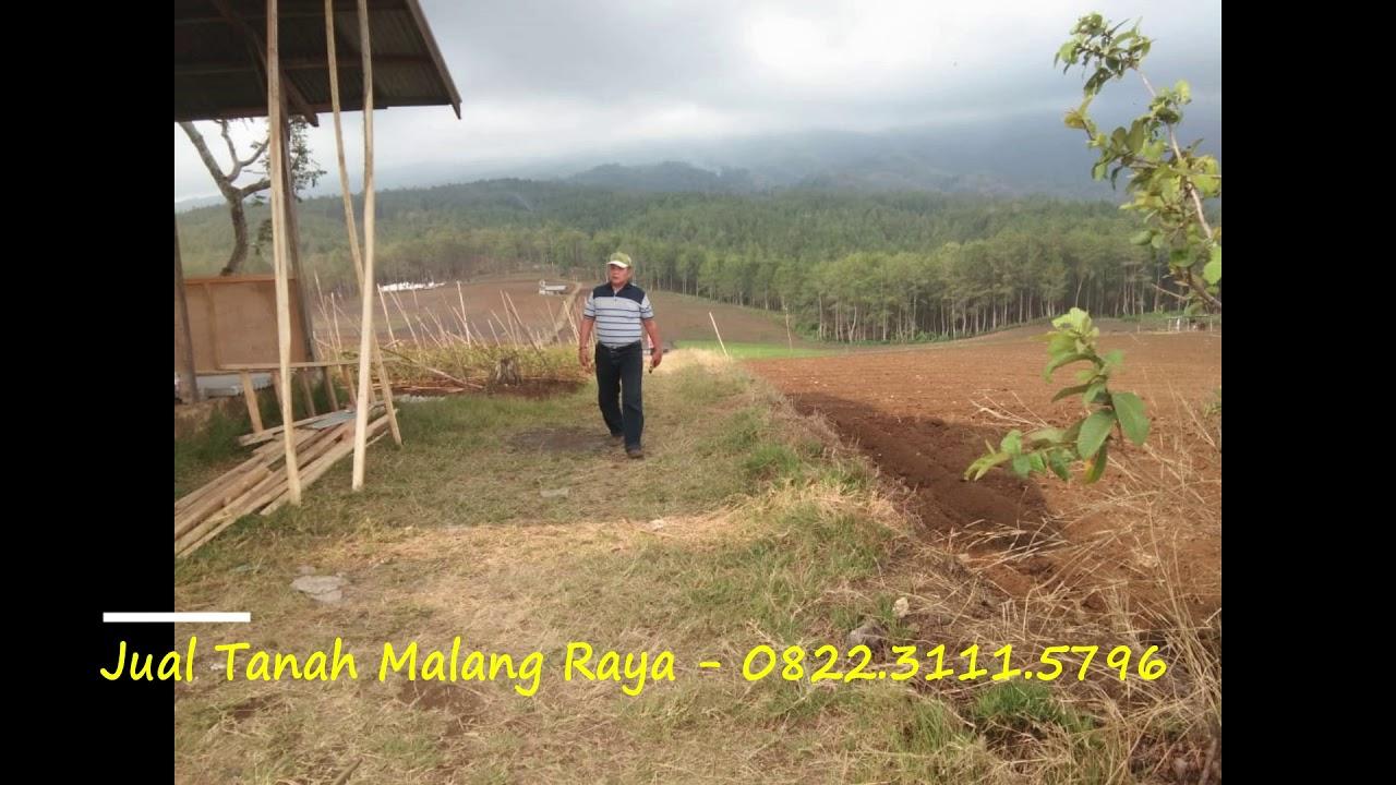 Jual Tanah Malang Raya - 0822.3111.5796 - YouTube