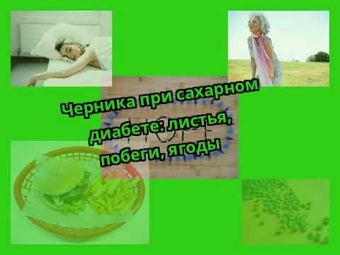 Черника при сахарном диабете: листья, побеги, ягоды