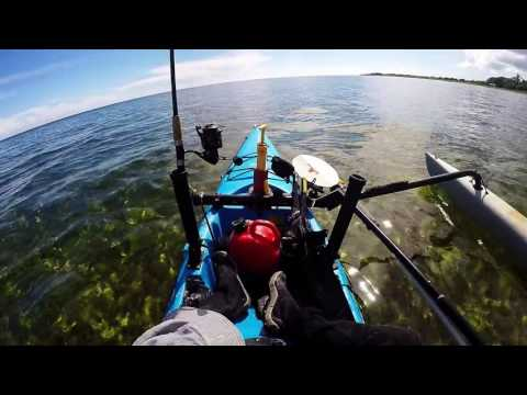Key West Kayak Fishing - Permit: Live Bait Catching and Pattern Search