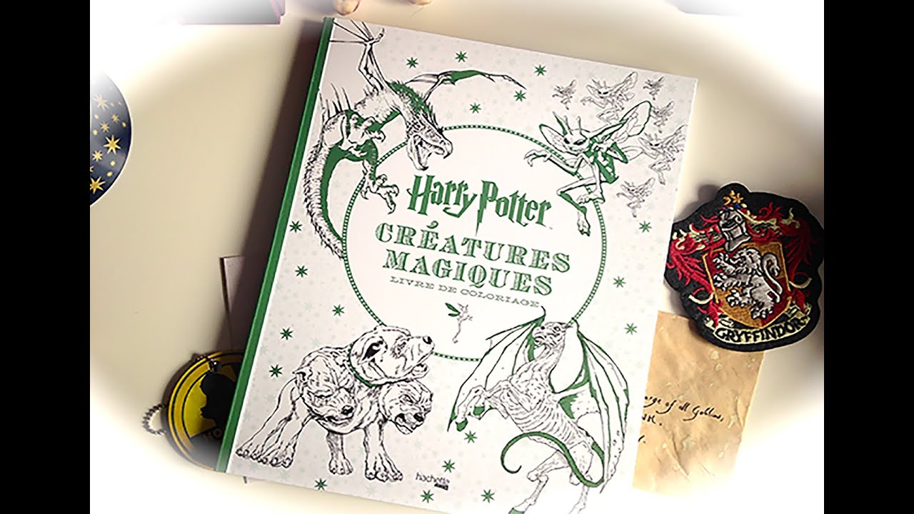 Coloriage Anti Stress Harry Potter.Harry Potter Les Creatures Magique Livre De Coloriage