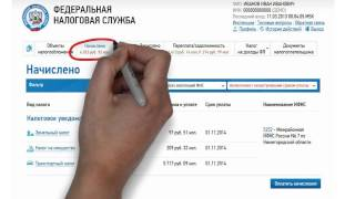 Видео урок на тему, как платить налоги он-лайн