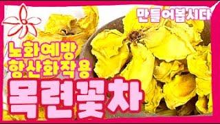 목련 꽃차 만들기(만드…