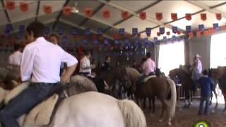 II Feria del Caballo   Medina del Campo 2013
