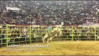 Gallito de Morelia vs Meteoro de Rancho la Mi...