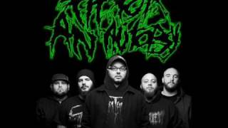 Watch Fit For An Autopsy Wrath video
