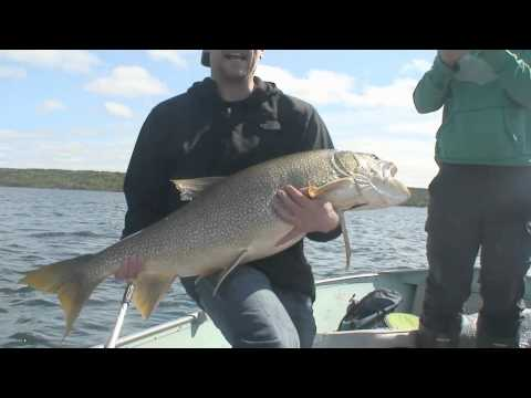 Big Fish Lake Trout Prosperous Lake Yellowknife Northwest Territories