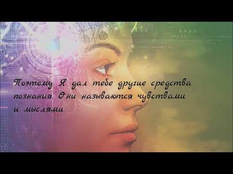 Чувства и мысли - ваши средства познания себя и мира. Нил Уолш