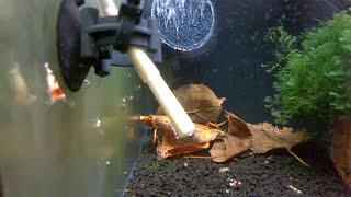 HOW TO: Diy Aquarium Oxygen TUTORIAL