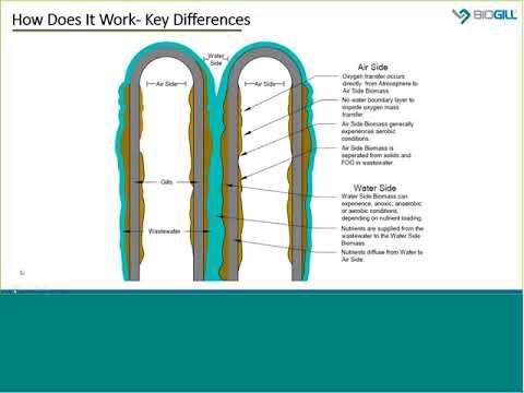 BioGill Webinar #1: Technology Overview