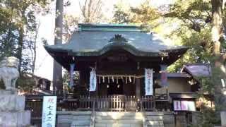 和泉熊野神社---東京都杉並区