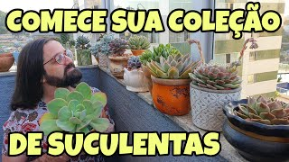 10 Suculentas de Fácil Cultivo para sua Coleção