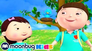 Animal Rescue Song   Baby Songs   Kids Learning Songs & Nursery Rhymes