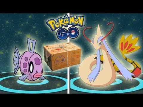 RECOMPENSA y EVOLUCIÓN de FEEBAS SHINY a MILOTIC SHINY en Pokémon GO [Keibron] thumbnail