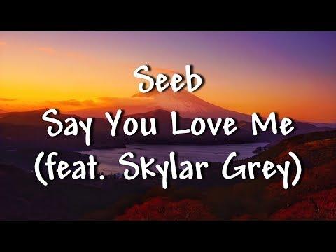 Seeb - Say You Love Me (feat. Skylar Grey) - Lyrics