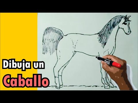 Dibujos de animales 1/8 - Cómo dibujar un caballo - horse drawing