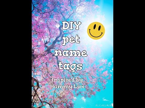 DIY pet name tags