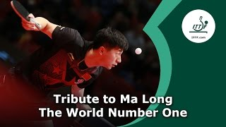 Tribute to Ma Long - The World Number 1