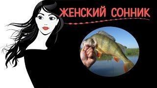 видео Сонник Рыба во сне?