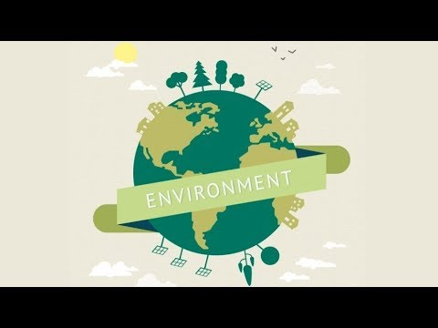 Environmental Protection Animation
