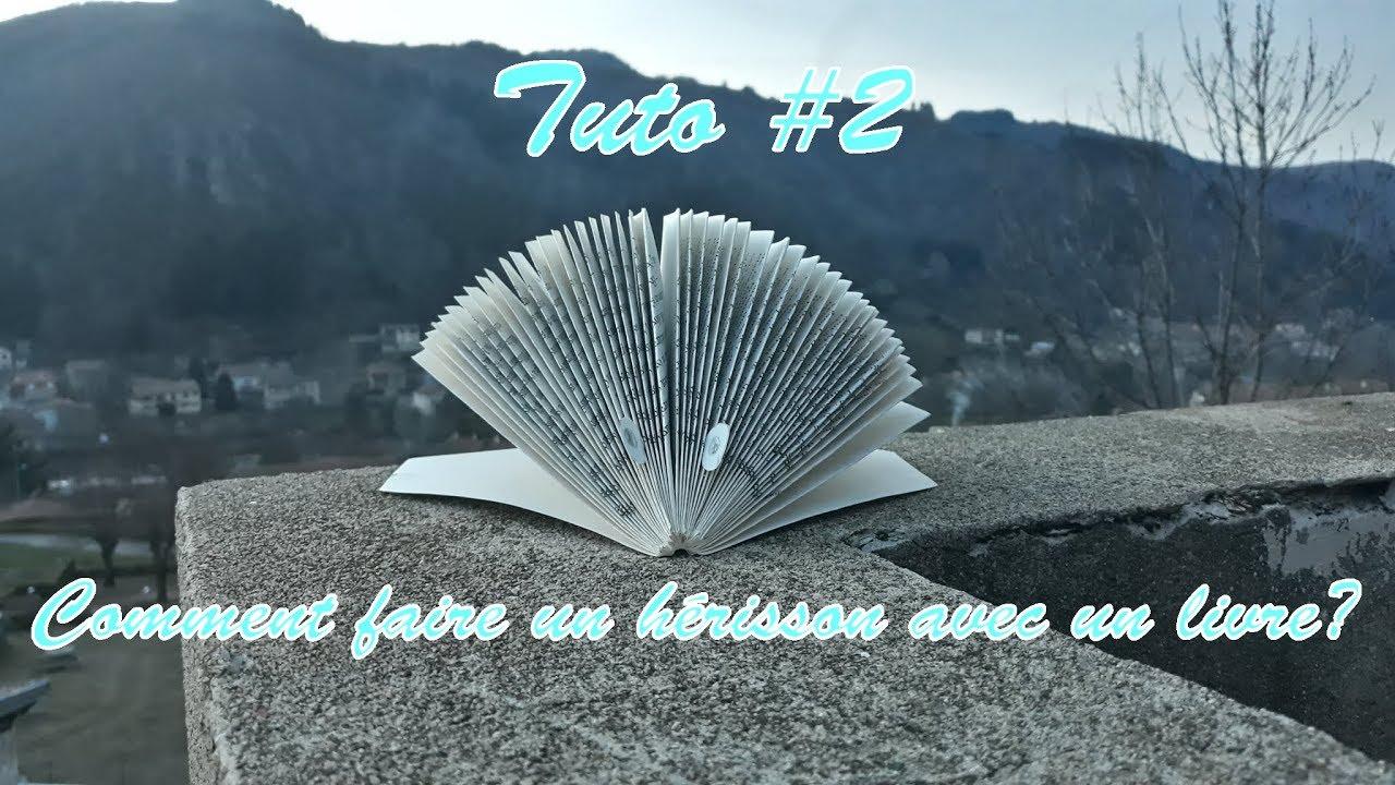 Tuto 2 Comment Faire Un Herisson Avec Un Livre