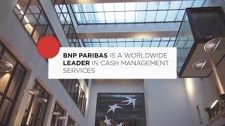 DigitasLBi - BNPParibas Cash Management