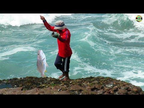 Pescador Pesca Corvina