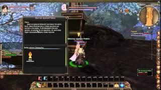 Обзор на игру reborn online (От Карамаза) 2015 01 25 1654 32