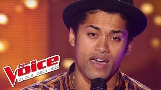 The Voice 2012 | Thomas Mignot - Grenade (Bruno Mars) | Blind Audition