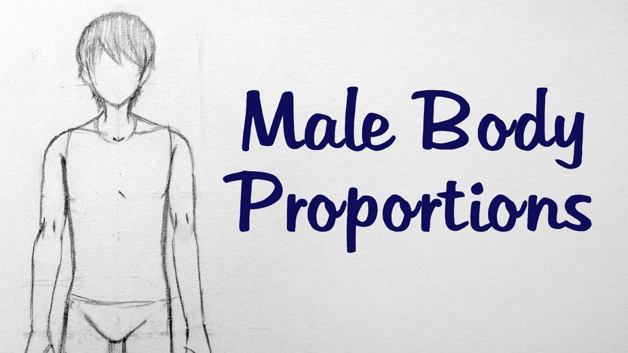 How to Draw Manga: Male Body Proportions - YouTube